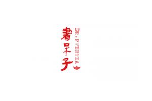 书呆子logo