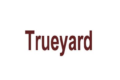 图雅得logo