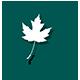 薇枫logo