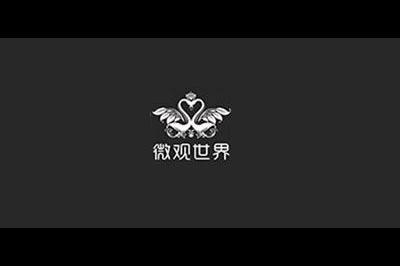 微观世界logo
