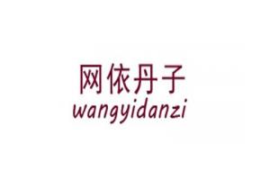 网依丹子logo
