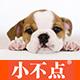 小不点宠物用品logo