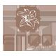 杨门logo