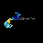 雅绮思logo