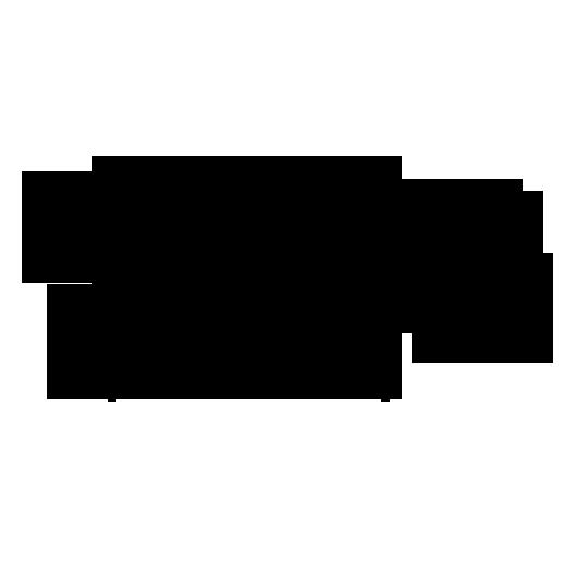 亚薇莎logo