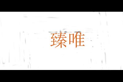 臻唯logo