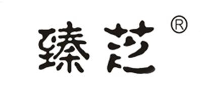 臻芝logo