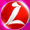 中极星logo